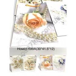 Пакет подарочный №699А